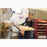 Работа в Польше в пекарне. Работа за границей