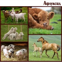 Афлуксид. Антидиарейное средство для животных