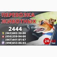 Срочно нужны водители такси со своим авто! Лучший эфир Киева! Высокие тарифы