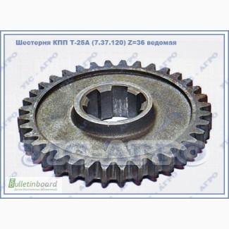 Шестерня КПП Т-25А (7.37.120) Z 36 ведомая