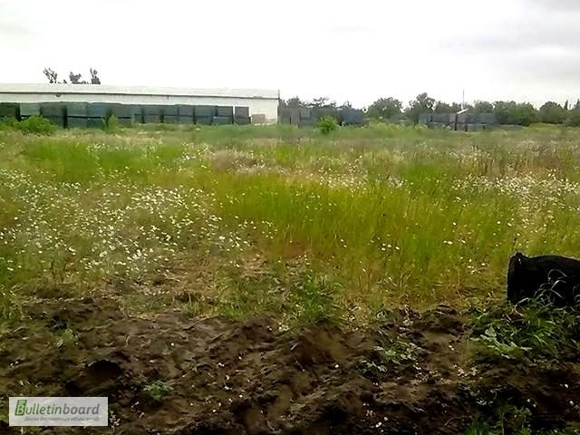 Фото 2. Продам два участка под застройку в Херсонской области