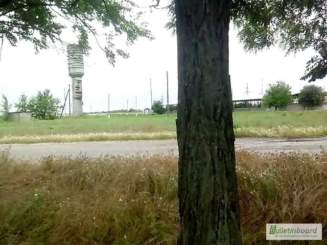 Фото 4. Продам два участка под застройку в Херсонской области