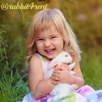 Животные для фотосессии, видеосъемки и праздника