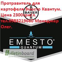 Протравитель Эместо Квантум 273, 5 FS для картофеля, Bayer, расход 0, 25 0, 3 л/1 т семян