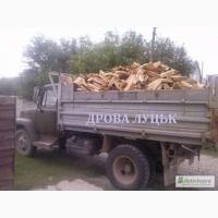 Продам в Луцьку, Торчині дрова рубані тверда порода (Граб, Дуб, Ясен), ТОРФОБРИКЕТИ