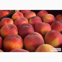 Персики из Испании