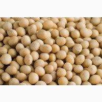 Soybeans FOB ports of Black sea