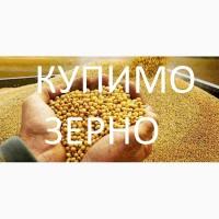 Закуповуємо сою будь-якої якості, гмо и без ГМО По Волинській області