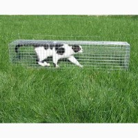 Живоловушка, живоловка для кота. Клетка самолов для кошек. Купить живоловку на кота