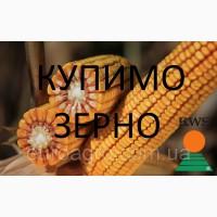 Компанія купує кукурудзу (побічний продукт кукурудзи)