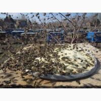 Соевая мука для пчел (белковая подкормка), 1кг. Днепр