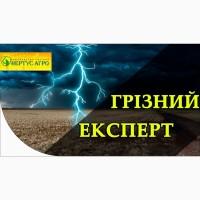 Продам Посев. мат. устойчив к 7 рас. с применением 50 гр ганстар