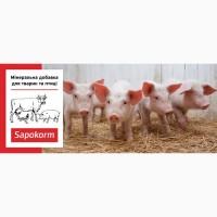 Сапокорм - мінеральна добавка до корму свиней, тона