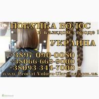 Продать волосы в Харькове дорого Купим волосы дорого 0933447000