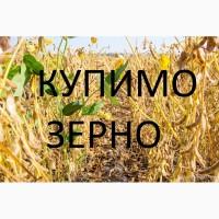 На постійній основі закуповуємо у сільгоспвиробників сою якості