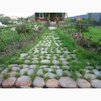 Травница садовая дорожка.Продажа плитки по Запорожью