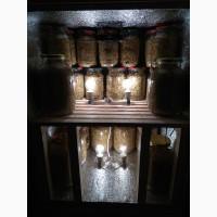 Продам табак, Virginia gold (Вирджиния голд) импотр из Молдовы, Мариуполь