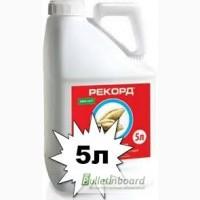 Протравитель семян Рекорд, 5л, Укравит