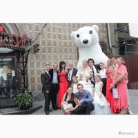 Белый Медведь сделает Ваш праздник незабываемым