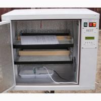 Автоматический инкубатор BEST (БЕСТ) 200