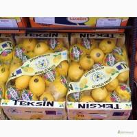Лимон, Египет, TEKSIN Турция