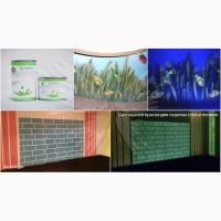 Светящаяся краска для стен AcmeLight Interior