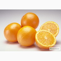 Апельсин, JAFFA Израиль