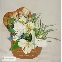 FlowerBox под заказ, Цветы в коробке в Киеве
