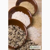 Рис оптом длинный, круглый, пропаренный, сечка. басмати, гречка