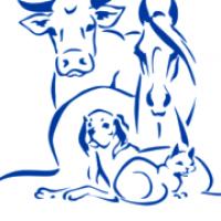 Поставки оптом ветеринарных препаратов и инструментов по всей Украине Veterinariya_info