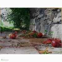 Картина Гранаты, холст, масло, 30х40 см