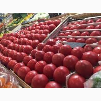 Продам томаты помидоры опт с доставкой по Украине