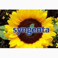 Продам семена подсолнечника Syngenta в ассортим