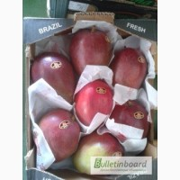 Продаем манго из Испании