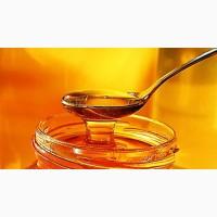 Куплю мед дорого! (без антибиотиков)