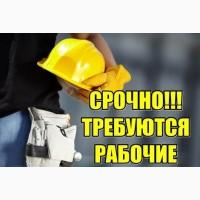 Работа в Польше разнорабочим. Легальная работа от «Workbalance» Бесплатные вакансии