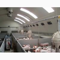 Воздушное отопление свинарника