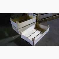 Ящик под сливу грибы ягоды 50*30*13 см