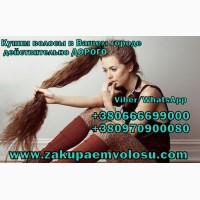 Продать волосы в Борисполе дорого Скупка волос Борисполь