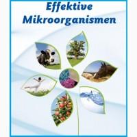 Комплексный микробиологический препарат XXI века для животных и птиц