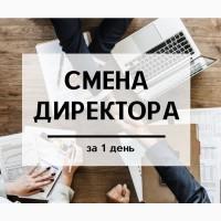 Смена директора ООО за 1 день