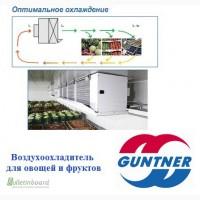 Guntner Agri-Cooler - воздухоохладитель для сельскохозяйственной продукции