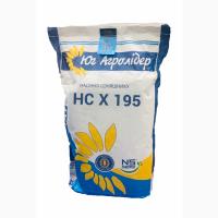 Семена подсолнечника НС Х 195 от заразихи