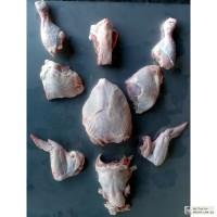 Оборудование для переработки мяса птицы