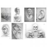 Качественные курсы рисования в Днепропетровске