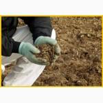 Перепелиный помет, эко - удобрение