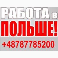 РАБОТА в Польше для МУЖЧИН 2019, работа в Польше. ЛЕГАЛЬНАЯ Работа в Польше