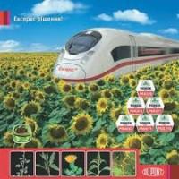 Розпродаж насіння соняшнику під гранстар Піонер PR64e71, P64LE25, P64LE99, P63LE113
