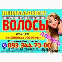 Продать волосы в Киеве дорого Куплю волосы в Киеве дороже всех