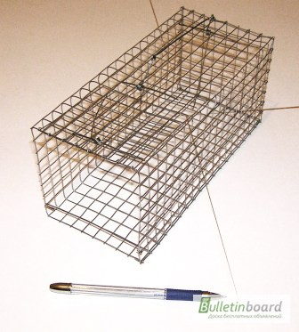 Как сделать клетку ловушку для зверьков